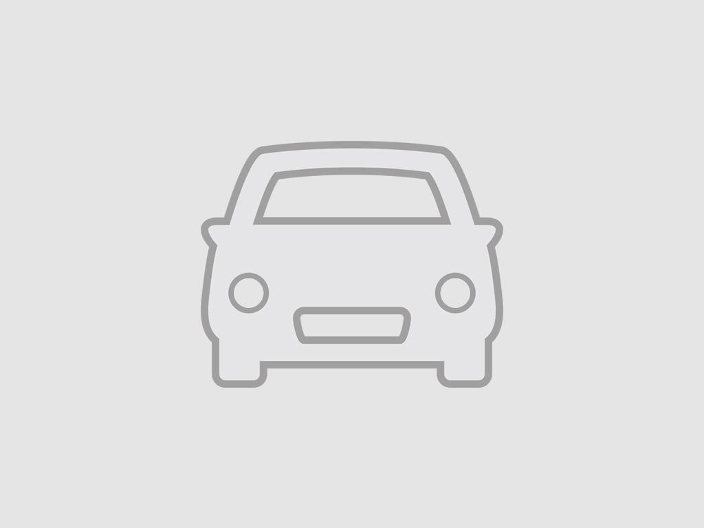 DS DS 3 Crossback E-Tense Business - ACHTERUITRIJCAMERA - NAV - DAB - PARKEERSENSOREN VOOR + ACHTER -